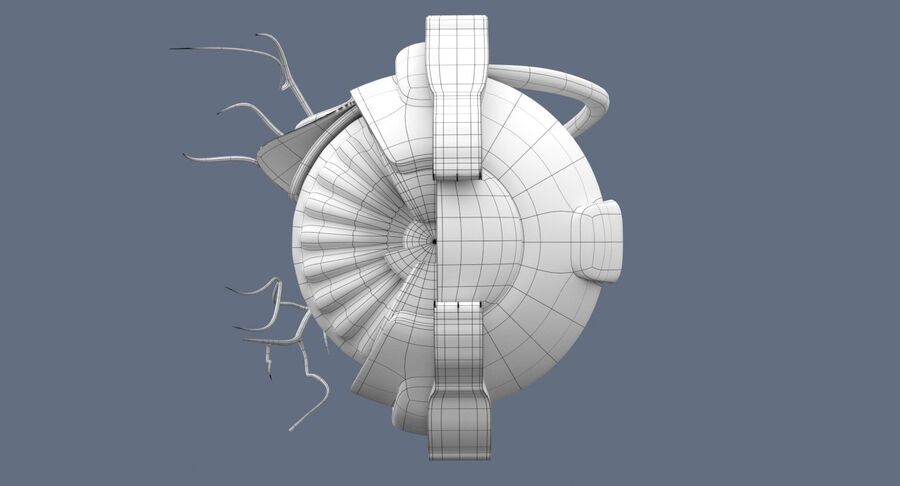 Eye Anatomy Section royalty-free 3d model - Preview no. 11