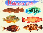 Colección de ilustraciones de peces Low Poly - Parte animada 2 modelo 3d