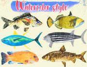 Colección de ilustraciones de peces Low Poly Parte 4 modelo 3d