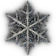 Płatek śniegu 3d model