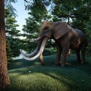 elefante cuatro colmillos modelo 3d