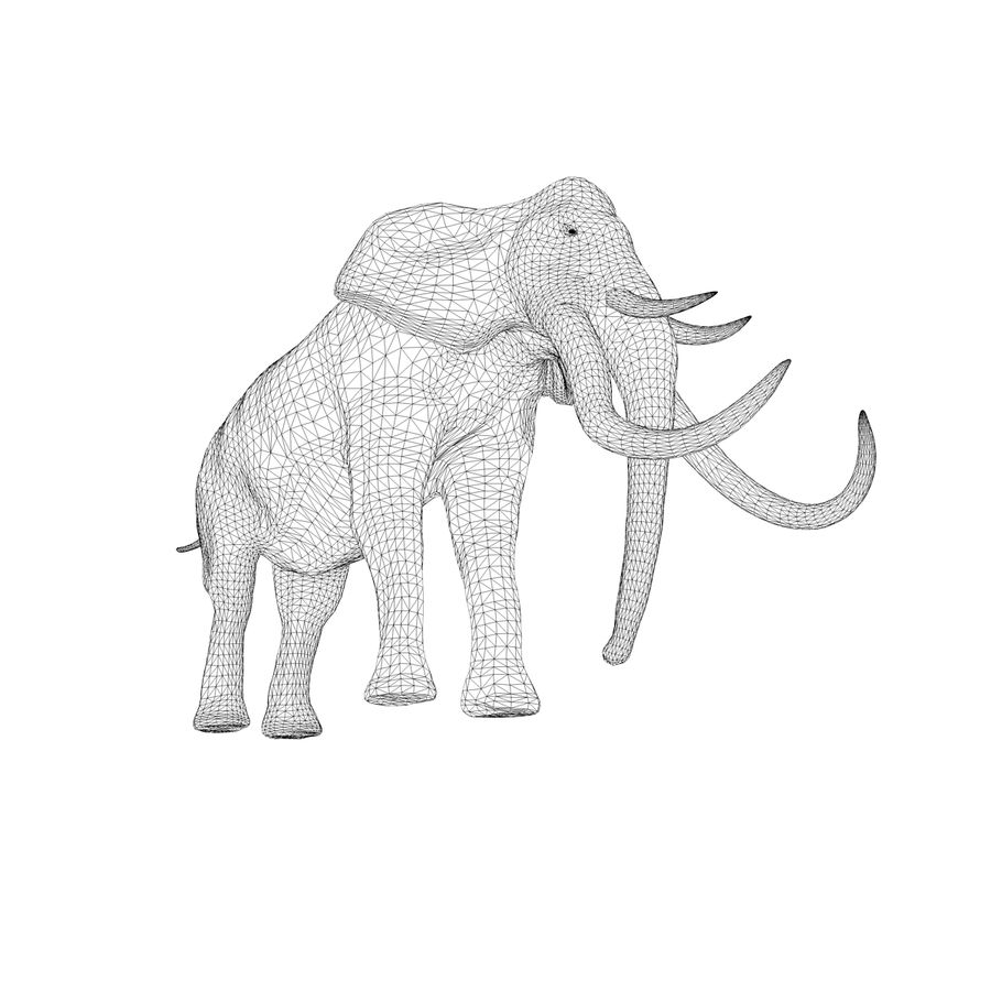 elephant four tusks royalty-free 3d model - Preview no. 12