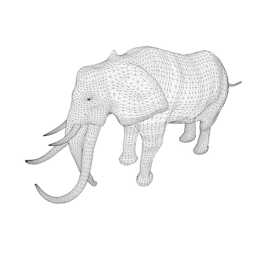 elephant four tusks royalty-free 3d model - Preview no. 11
