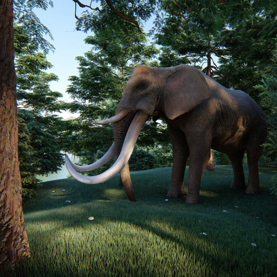 elephant four tusks royalty-free 3d model - Preview no. 1