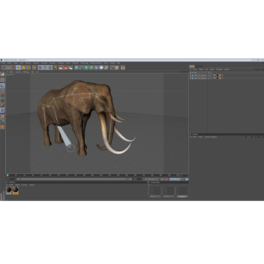 elephant four tusks royalty-free 3d model - Preview no. 13