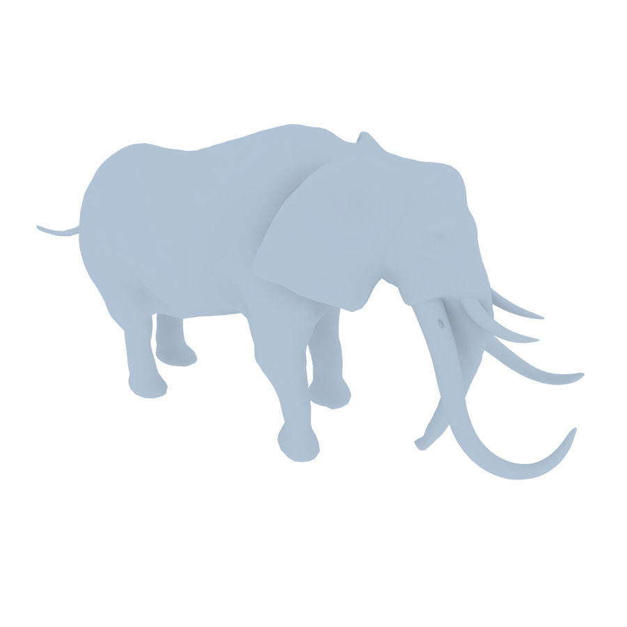 elephant four tusks royalty-free 3d model - Preview no. 8