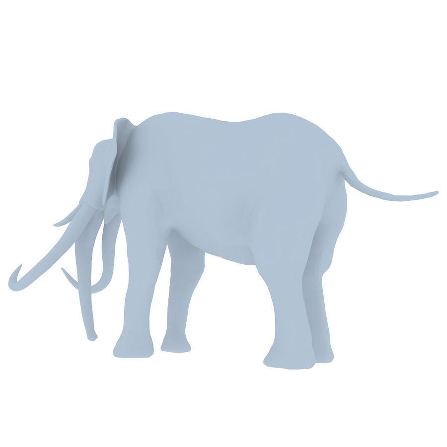elephant four tusks royalty-free 3d model - Preview no. 9