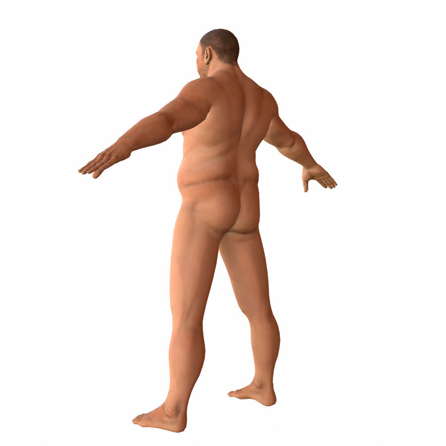 fat man (rigged) royalty-free 3d model - Preview no. 3