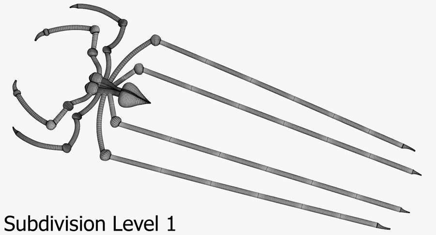 Spider royalty-free 3d model - Preview no. 15