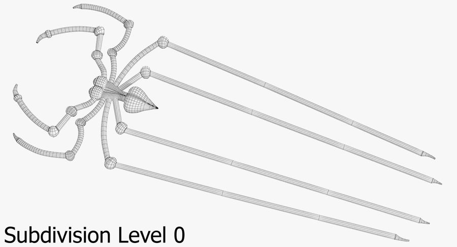 Spider royalty-free 3d model - Preview no. 14