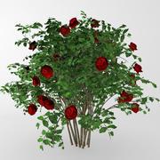 赤いバラの茂み 3d model