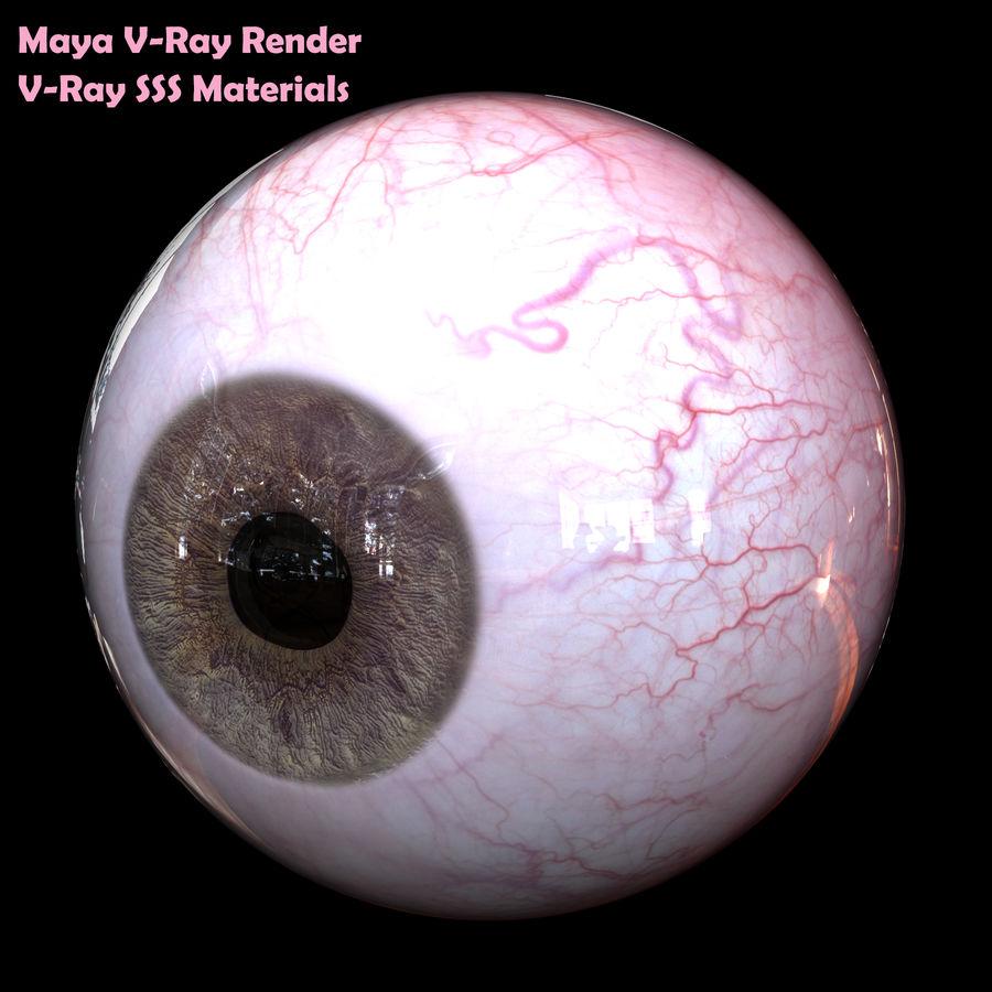 Реалистичный человеческий глаз royalty-free 3d model - Preview no. 15