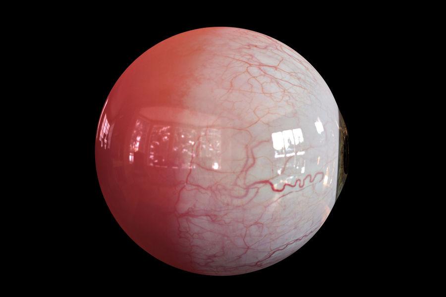 Реалистичный человеческий глаз royalty-free 3d model - Preview no. 6