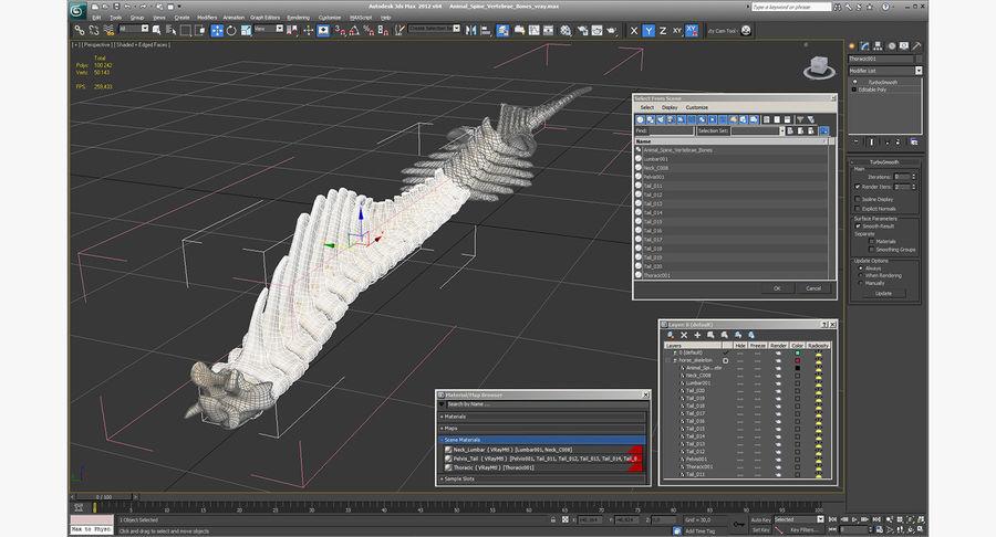 Animal Spine Vertebrae Bones 3D Model royalty-free 3d model - Preview no. 14