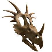 Styracosaurus Skull 3d model