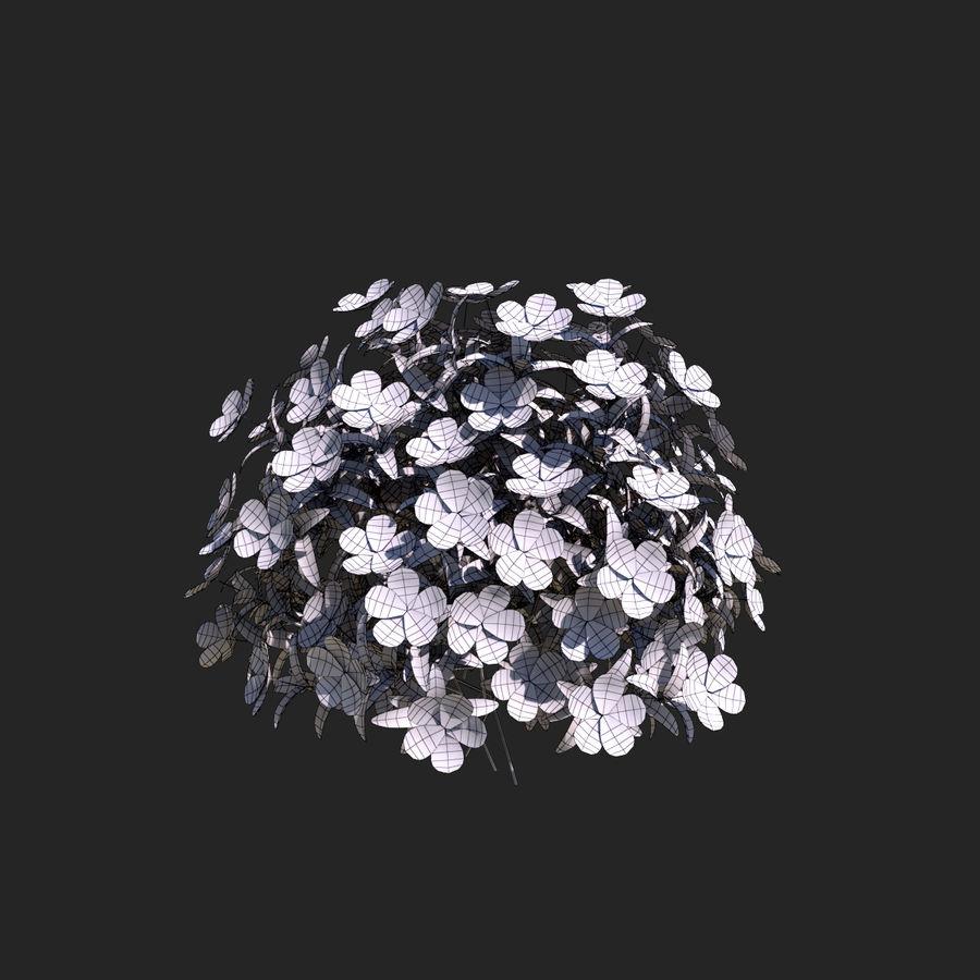 Pacote de arbusto de flores royalty-free 3d model - Preview no. 19