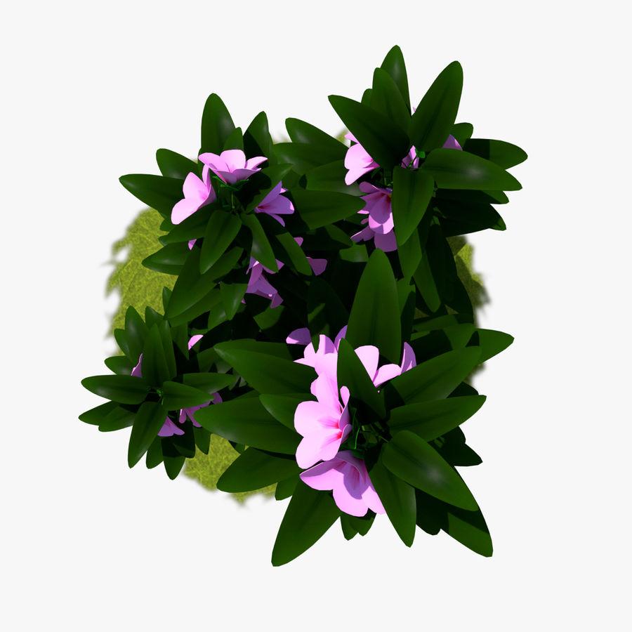 Pacote de arbusto de flores royalty-free 3d model - Preview no. 26