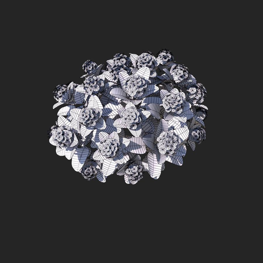 Pacote de arbusto de flores royalty-free 3d model - Preview no. 7