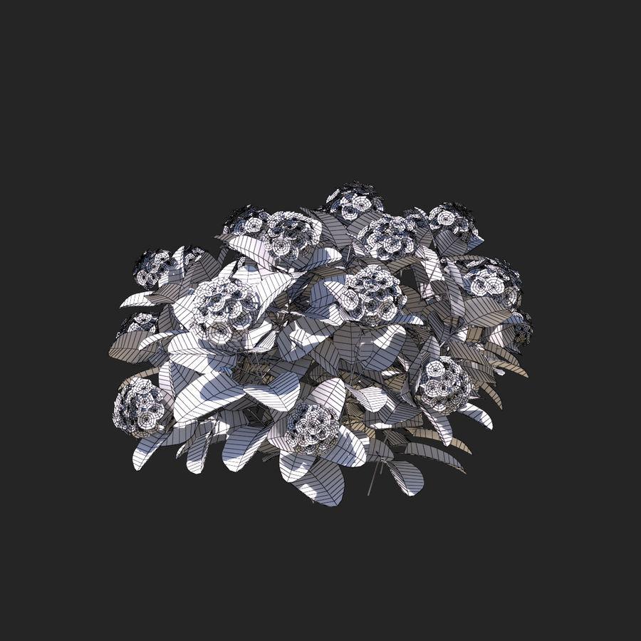 Pacote de arbusto de flores royalty-free 3d model - Preview no. 9