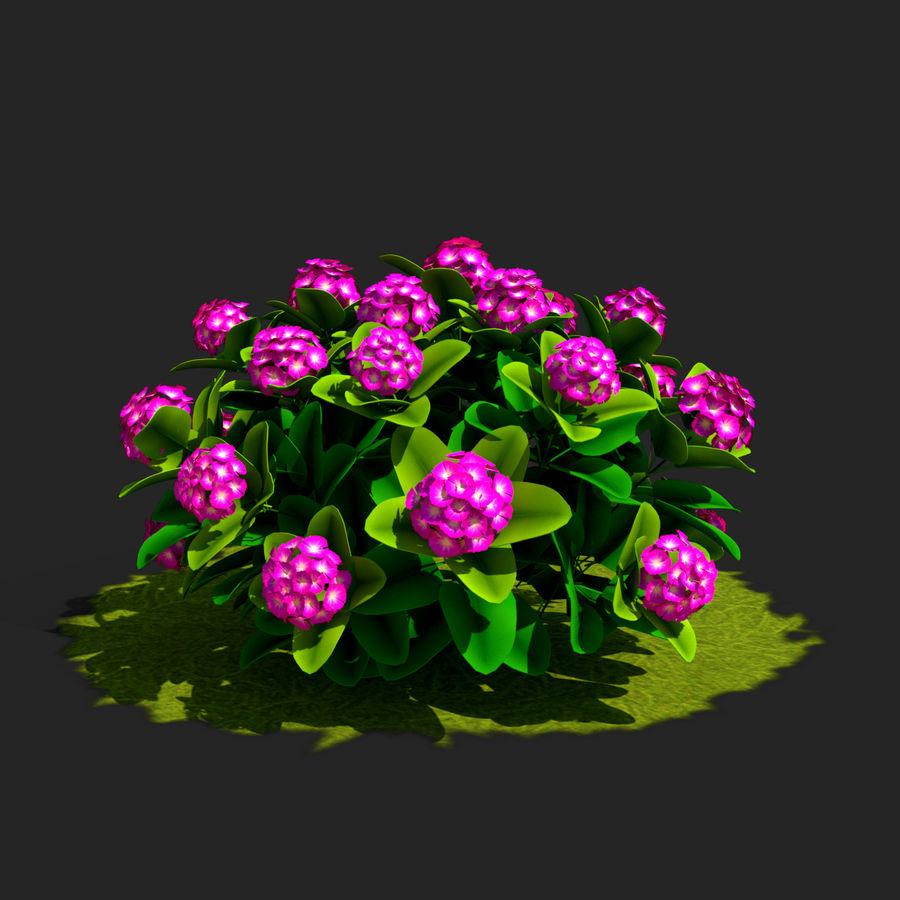 Pacote de arbusto de flores royalty-free 3d model - Preview no. 5
