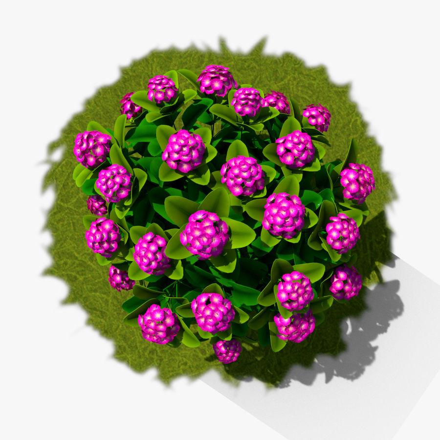 Pacote de arbusto de flores royalty-free 3d model - Preview no. 3