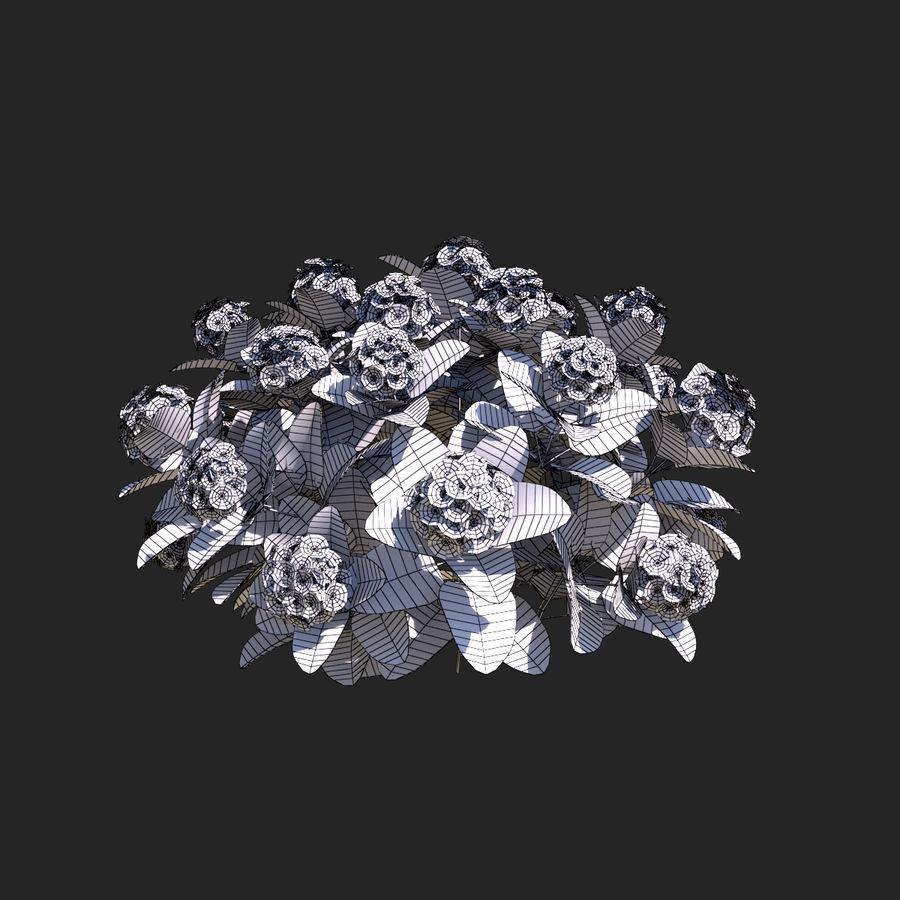 Pacote de arbusto de flores royalty-free 3d model - Preview no. 10