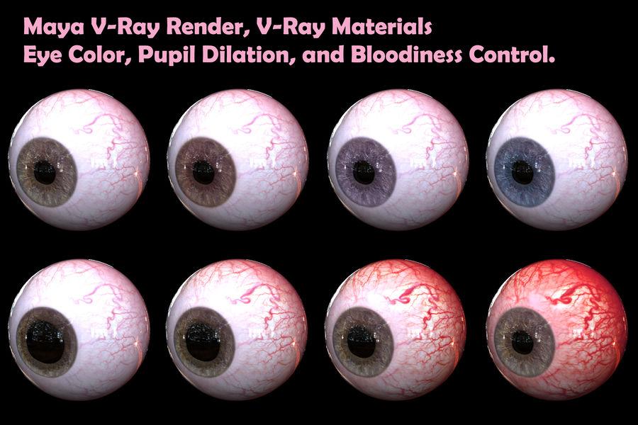 Реалистичный человеческий глаз V2 royalty-free 3d model - Preview no. 21