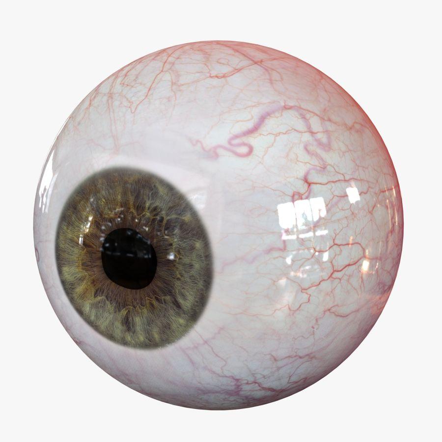 Реалистичный человеческий глаз V2 royalty-free 3d model - Preview no. 1