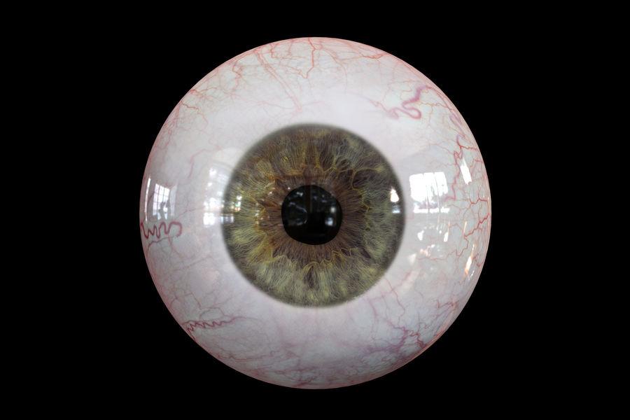 Реалистичный человеческий глаз V2 royalty-free 3d model - Preview no. 11