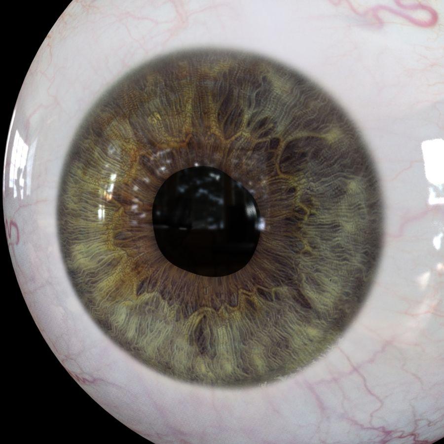 Реалистичный человеческий глаз V2 royalty-free 3d model - Preview no. 23