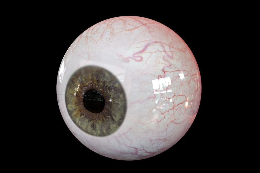 Реалистичный человеческий глаз V2 royalty-free 3d model - Preview no. 9