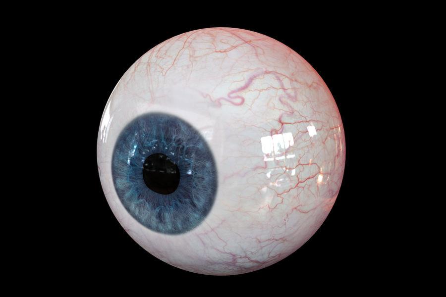 Реалистичный человеческий глаз V2 royalty-free 3d model - Preview no. 8