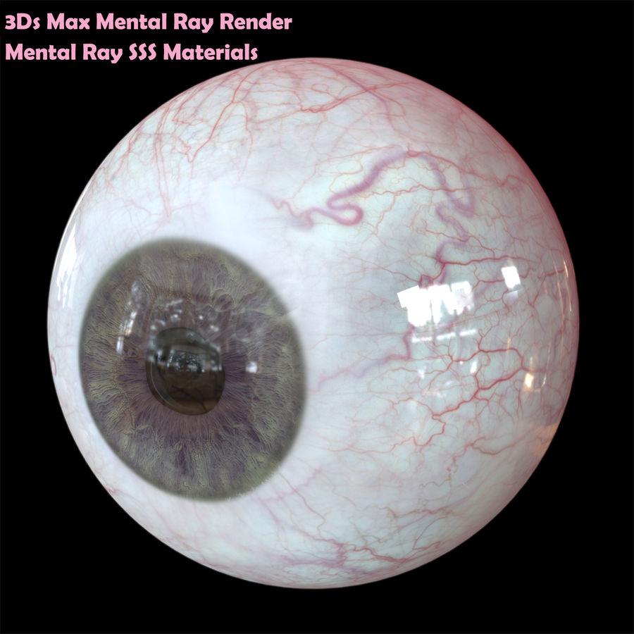 Реалистичный человеческий глаз V2 royalty-free 3d model - Preview no. 22
