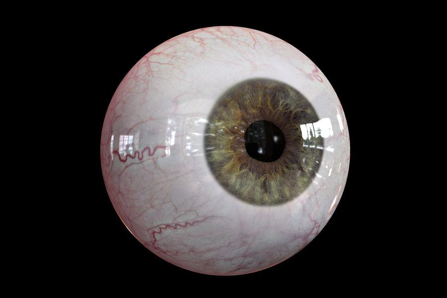 Реалистичный человеческий глаз V2 royalty-free 3d model - Preview no. 4