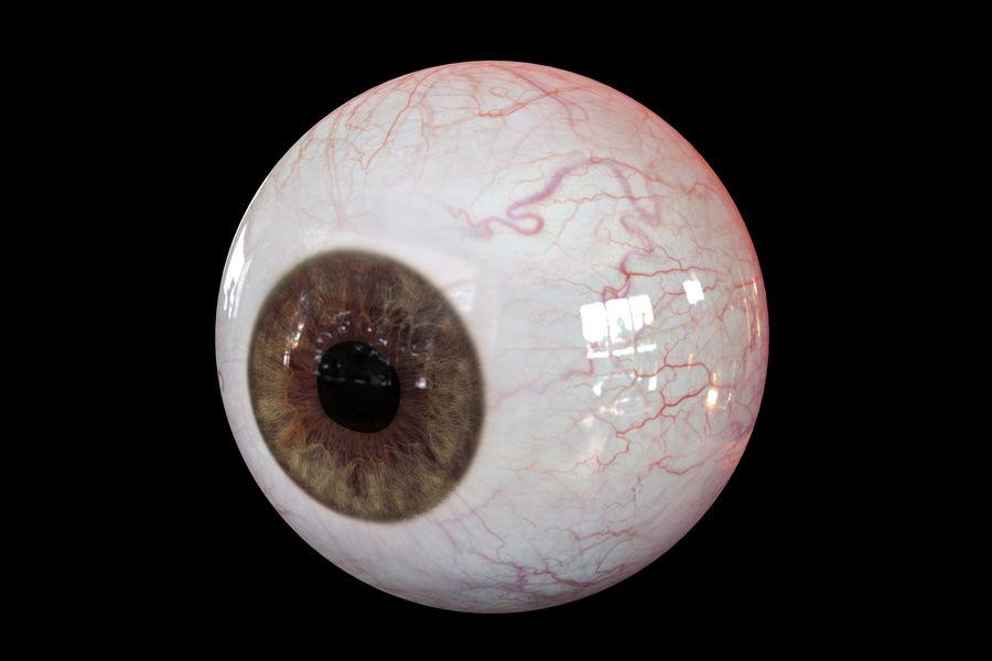 Реалистичный человеческий глаз V2 royalty-free 3d model - Preview no. 7