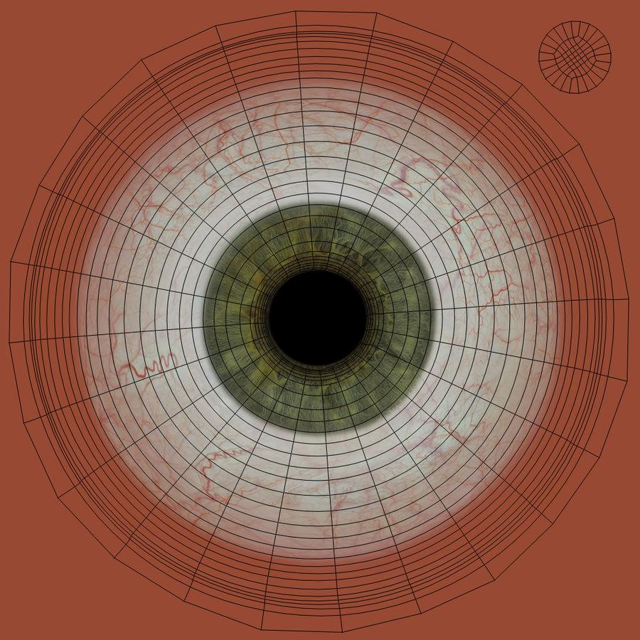 Реалистичный человеческий глаз V2 royalty-free 3d model - Preview no. 28