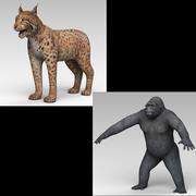 Lynx och Gorilla 3d model