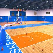 Trening koszykówki 3d model