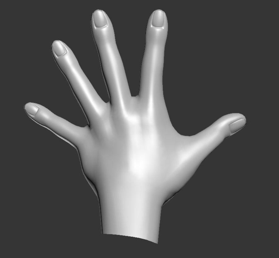 Hand Sculpt Spline royalty-free 3d model - Preview no. 3