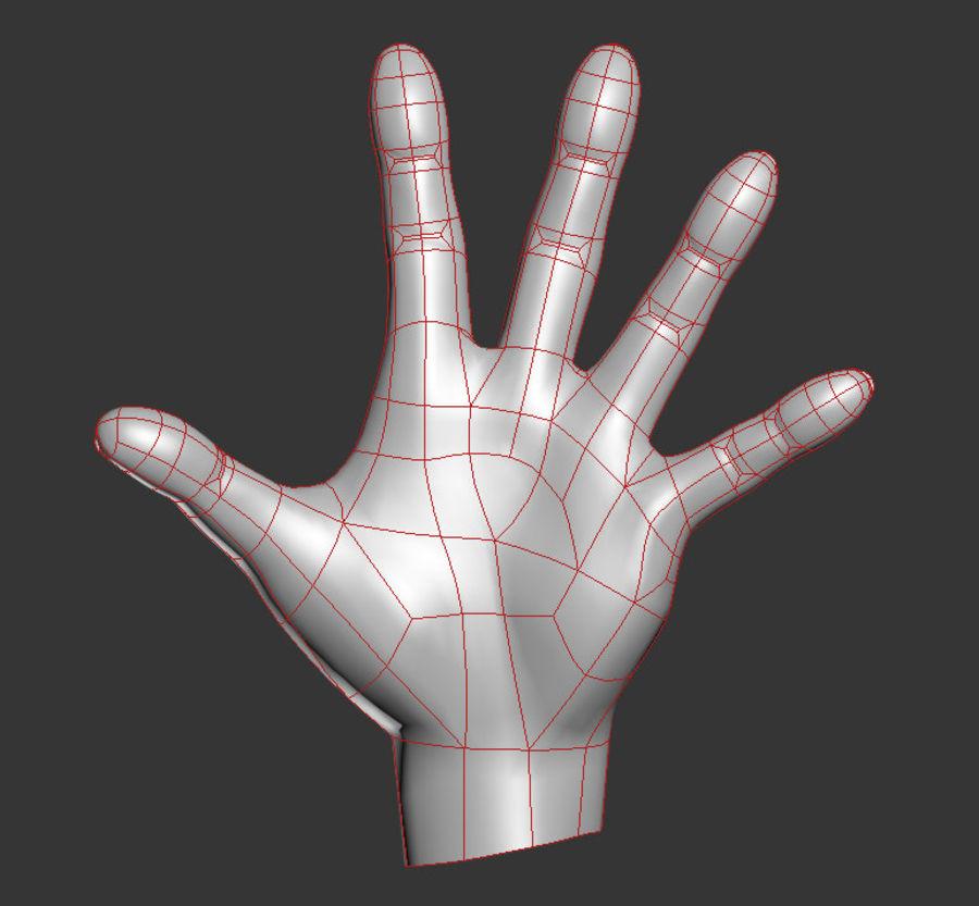 Hand Sculpt Spline royalty-free 3d model - Preview no. 6