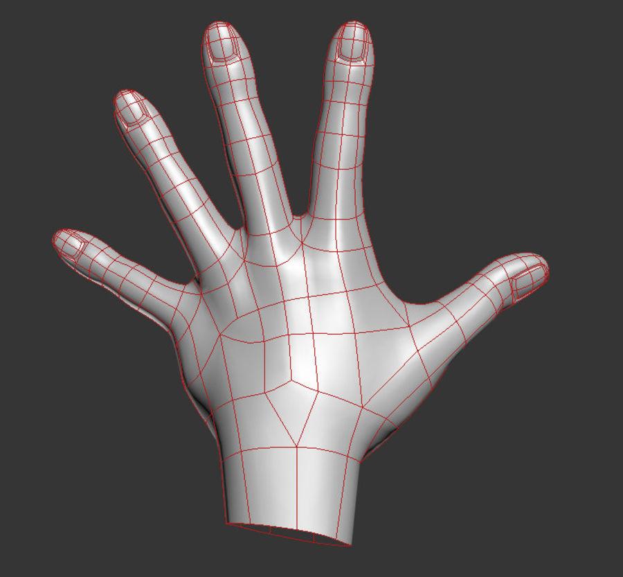 Hand Sculpt Spline royalty-free 3d model - Preview no. 4