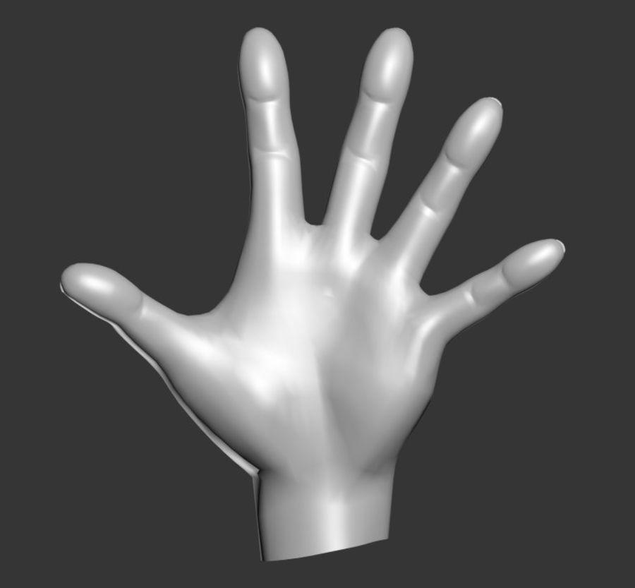 Hand Sculpt Spline royalty-free 3d model - Preview no. 5