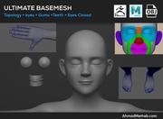 Ultimate Base Mesh 3d model
