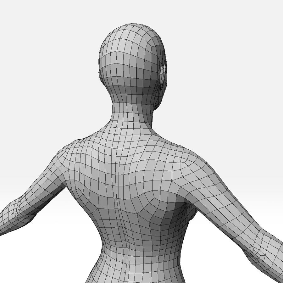 女Basemesh royalty-free 3d model - Preview no. 10