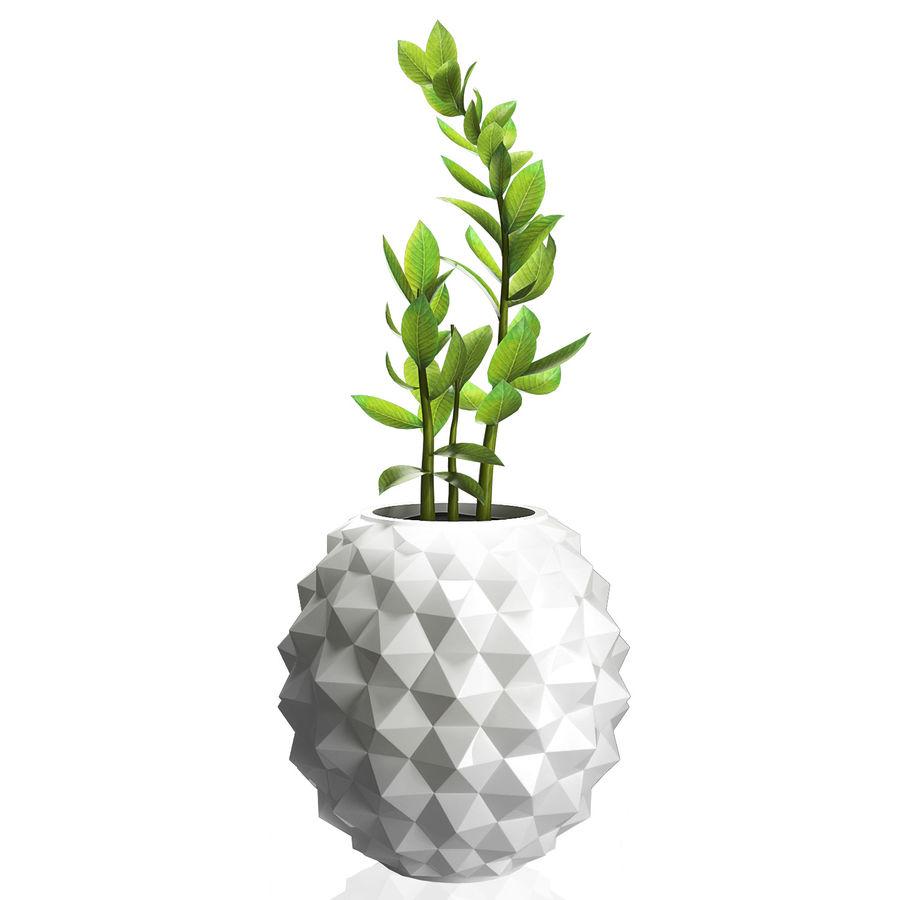 Bloempot met plant royalty-free 3d model - Preview no. 1