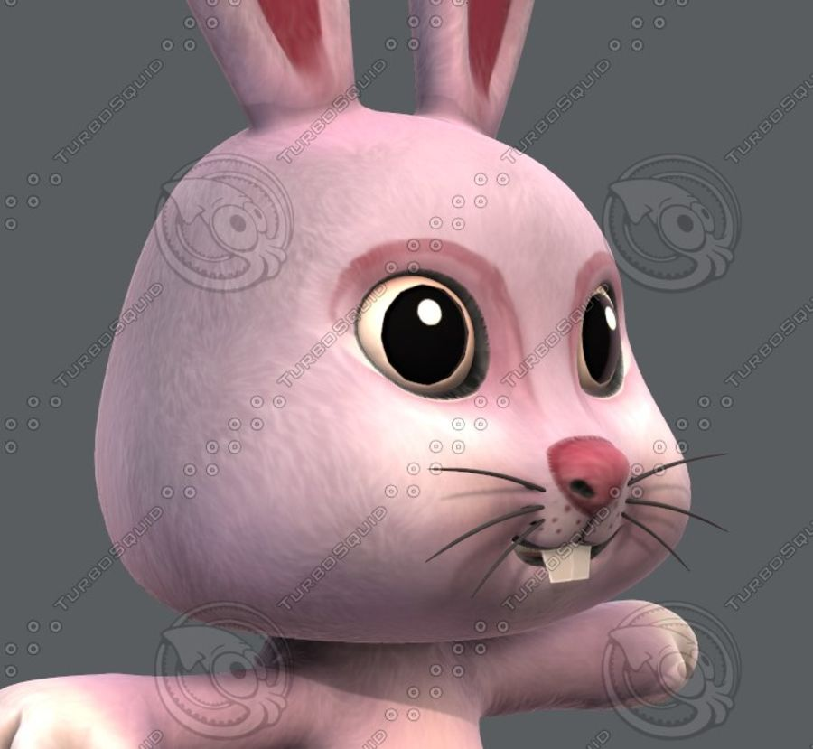 Rabbit V01 royalty-free 3d model - Preview no. 20