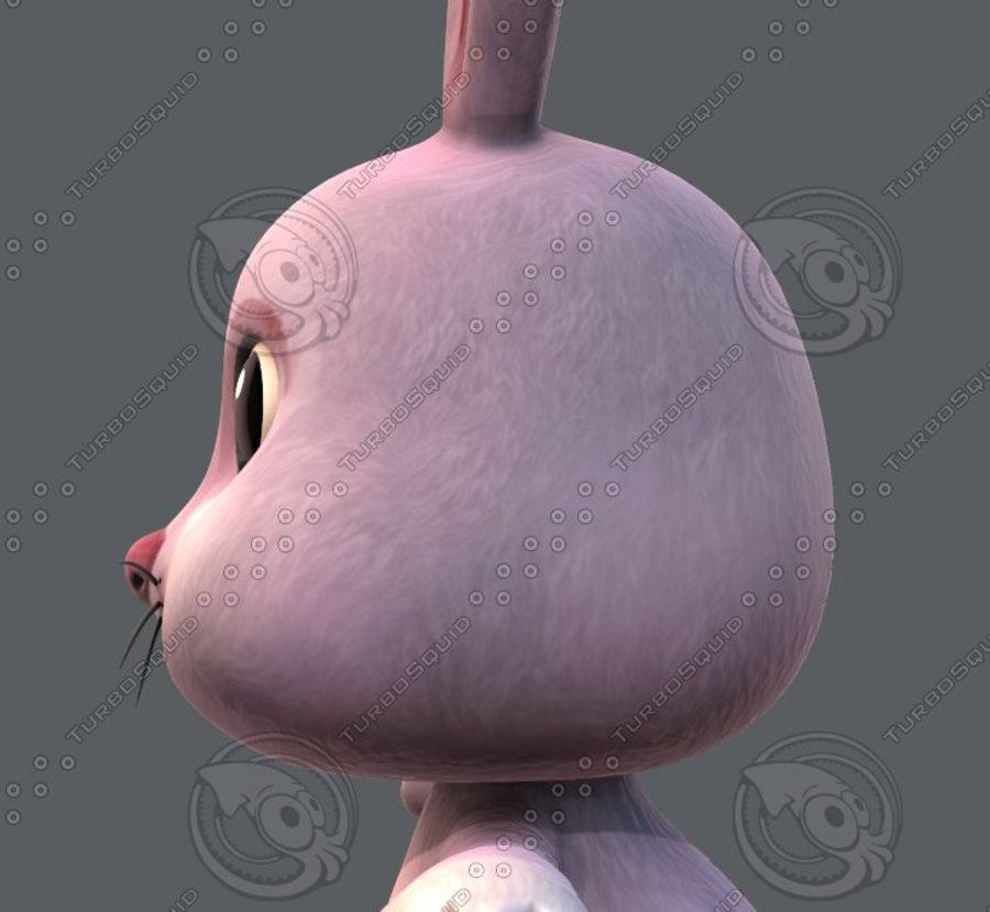 Rabbit V01 royalty-free 3d model - Preview no. 25