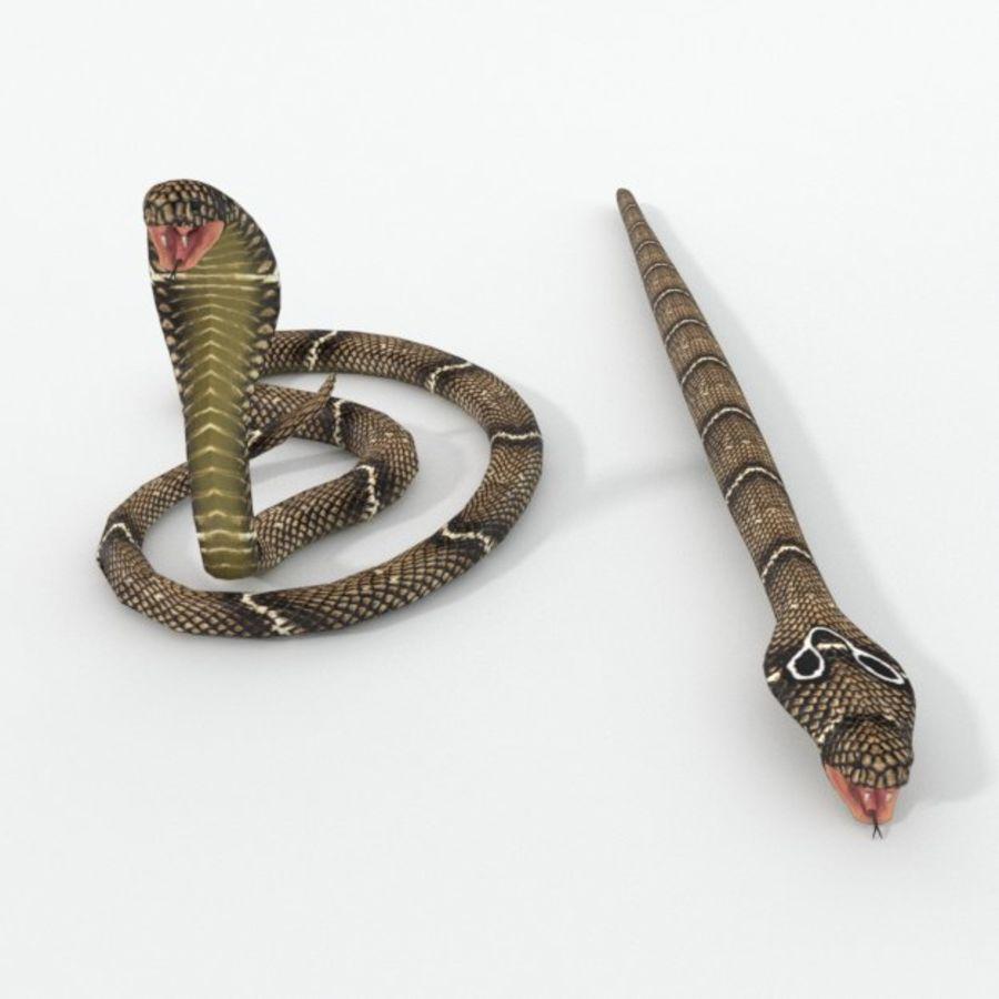 眼镜蛇蛇 royalty-free 3d model - Preview no. 3