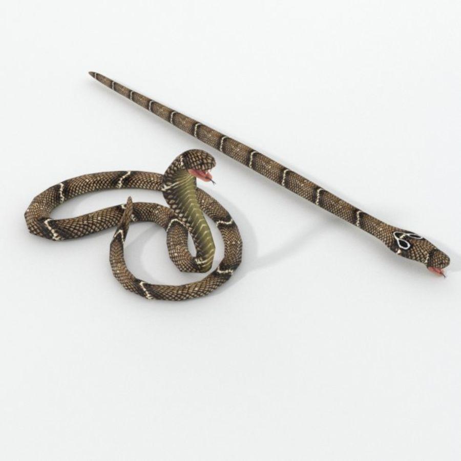 眼镜蛇蛇 royalty-free 3d model - Preview no. 1