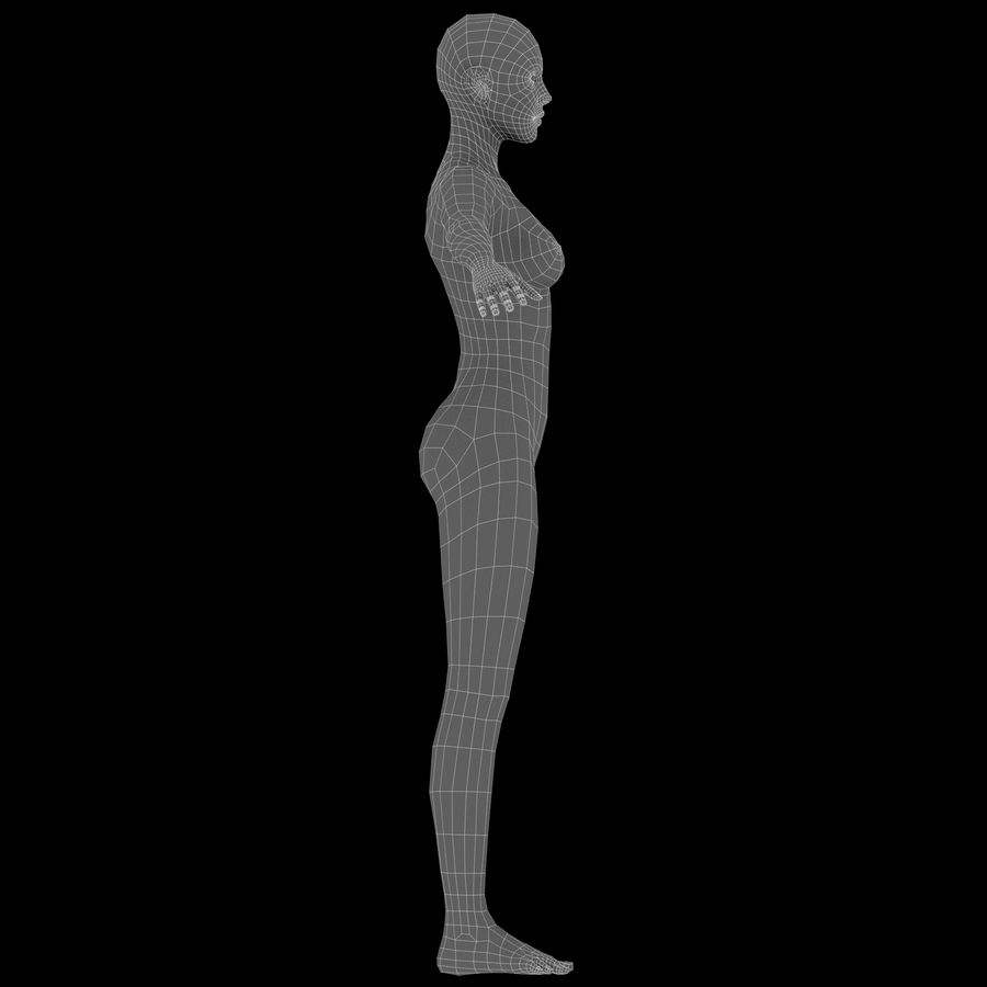 ベースメッシュの女性トポロジ royalty-free 3d model - Preview no. 18